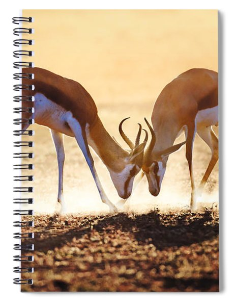 Springbok Dual In Dust Spiral Notebook