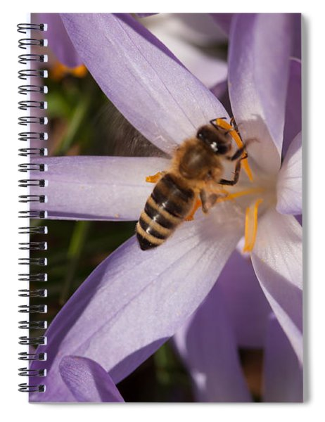 Spring's Welcome Spiral Notebook