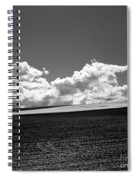 Sprouting Field Of Sunflowers And Field Of Rape At Back. Auvergne. France Spiral Notebook