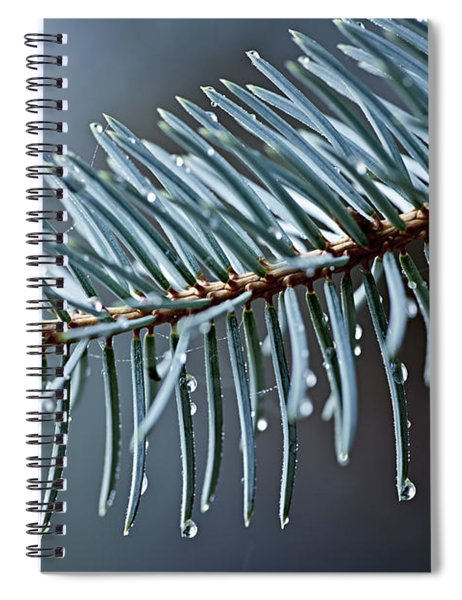 Spruce Needles With Water Drops Spiral Notebook