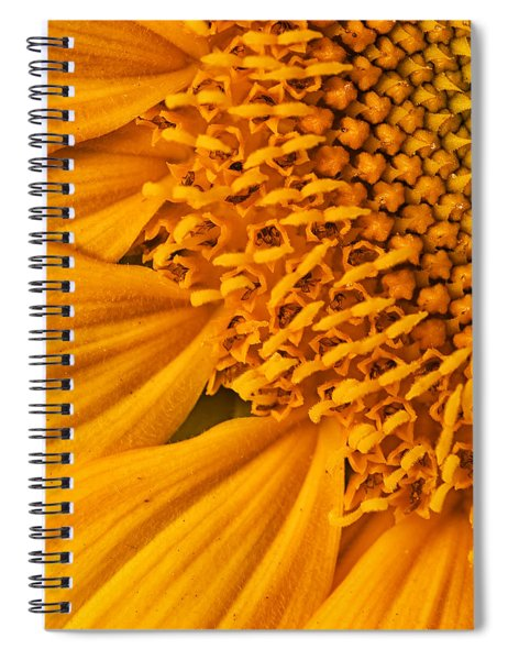 Square Sunflower Spiral Notebook