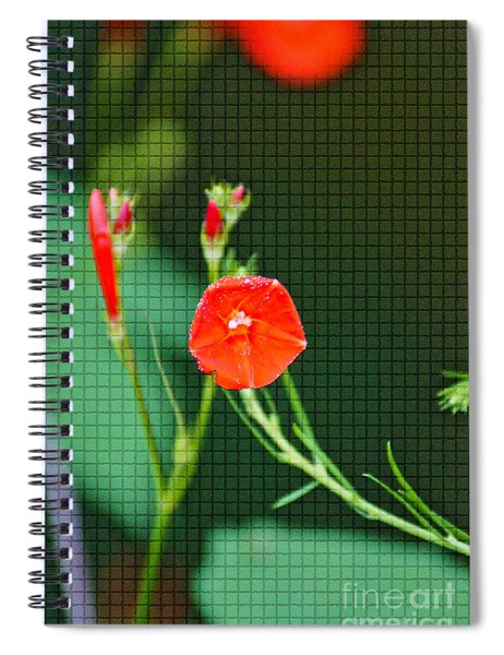 Squared Glory Spiral Notebook