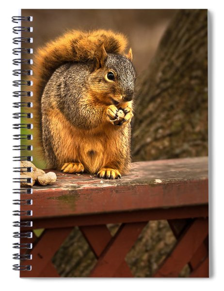 Squirrel Eating A Peanut Spiral Notebook