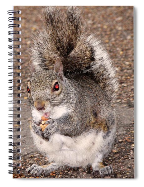 Squirrel Possessed Spiral Notebook