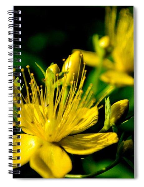 Spiral Notebook featuring the photograph St John's Wort by Scott Lyons