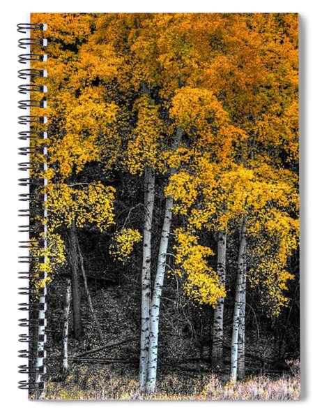Stand  Spiral Notebook