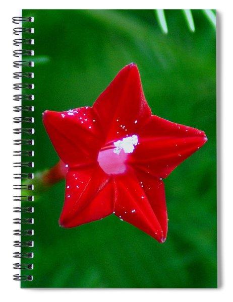 Star Glory Spiral Notebook