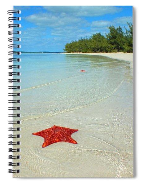 Starfish 5 Of Bottom Harbour Sound Spiral Notebook
