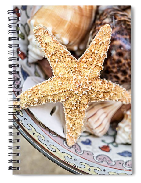 Starfish And Seashells Spiral Notebook