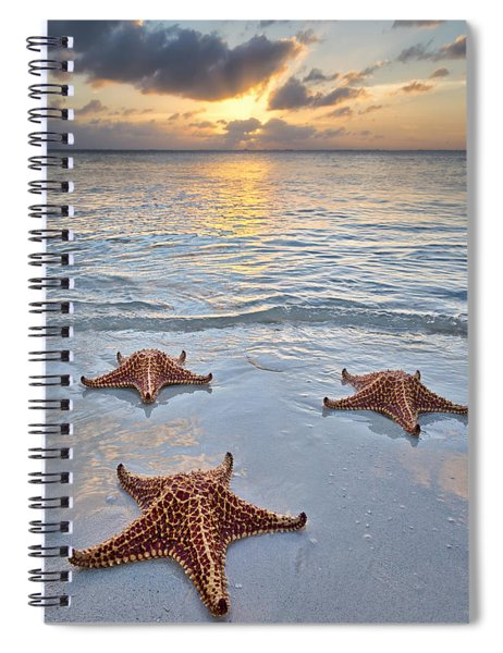 Starfish Beach Sunset Spiral Notebook