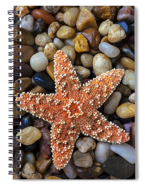 Starfish On Rocks Spiral Notebook