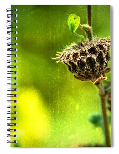 Stark Beauty Spiral Notebook
