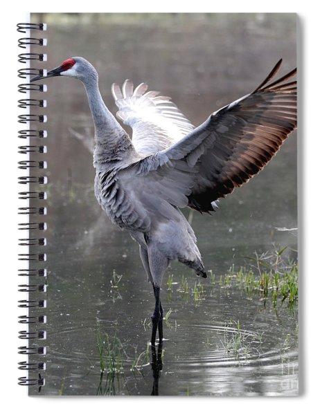 Statuesque Sandhill Crane Spiral Notebook