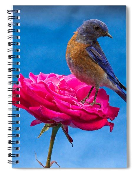 Steady Spiral Notebook