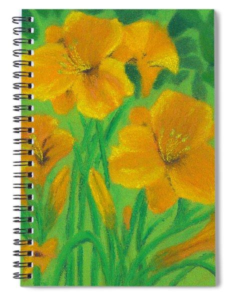 Stella De Oro Spiral Notebook