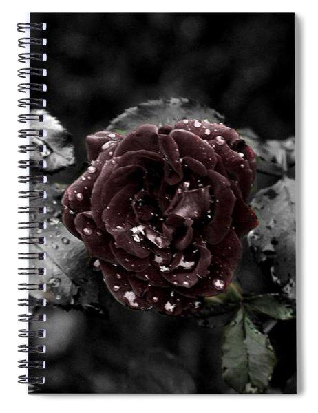 ...still A Rose Spiral Notebook