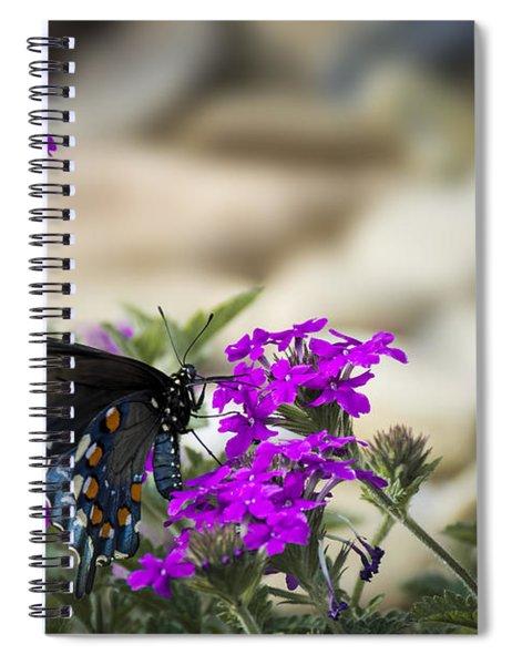 Still Beautiful Swallowtail Spiral Notebook