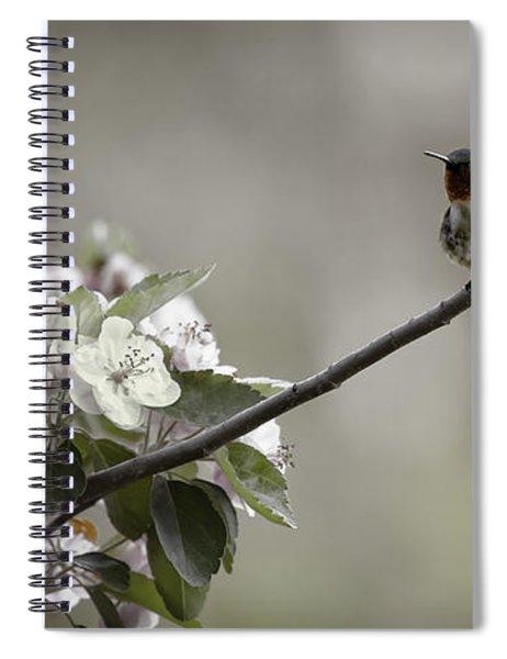 Stilllife Spiral Notebook