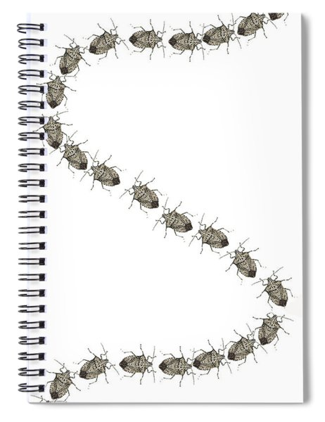 Stink Bugs I Phone Case Spiral Notebook