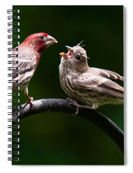 Spiral Notebook featuring the photograph Stop Playing Dad. Give It To Me by Robert L Jackson