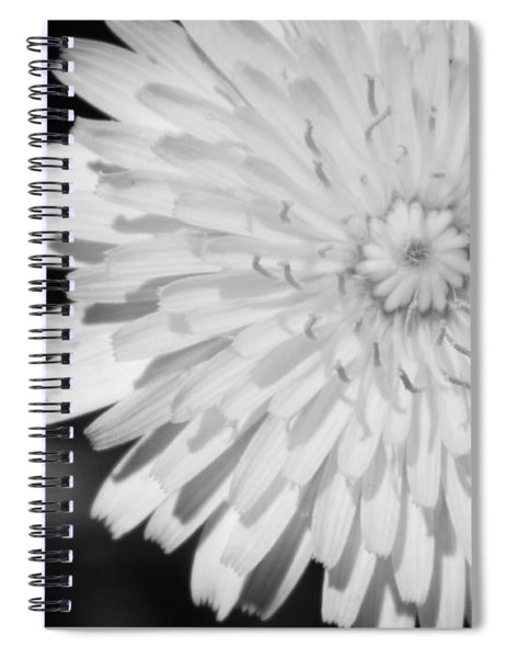 Stop Staring At Me Spiral Notebook