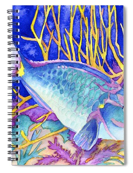 Stoplight Parrotfish Spiral Notebook