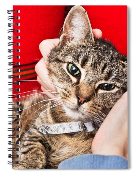 Stroking A Cat Spiral Notebook