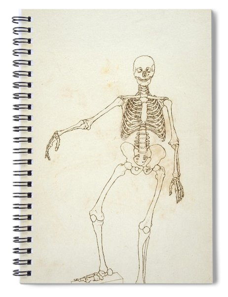 Study Of The Human Figure, Anterior View, From A Comparative Anatomical Exposition Of The Structure Spiral Notebook
