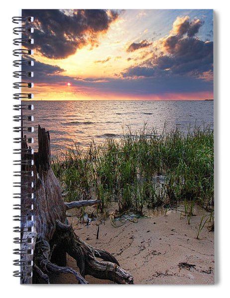 Stumps And Sunset On Oyster Bay Spiral Notebook