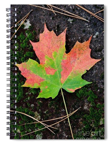 Sugar Maple Leaf Spiral Notebook
