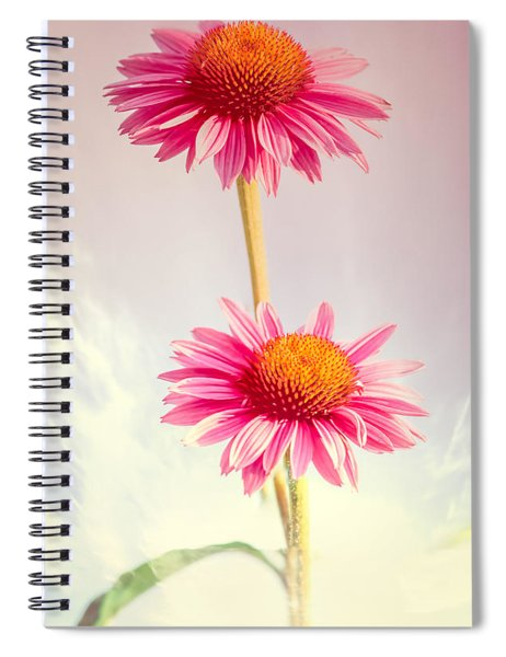 Summer Impressions Cone Flowers Spiral Notebook
