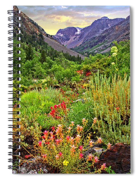 Summer Wildflowers In Lundy Canyon Spiral Notebook