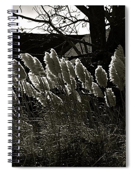 Sun And Shadow Spiral Notebook