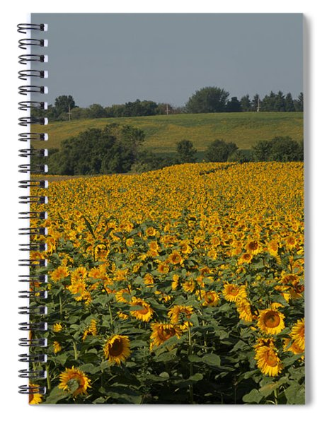 Sun Flower Sea Spiral Notebook
