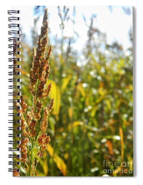 Sun Of Life Spiral Notebook