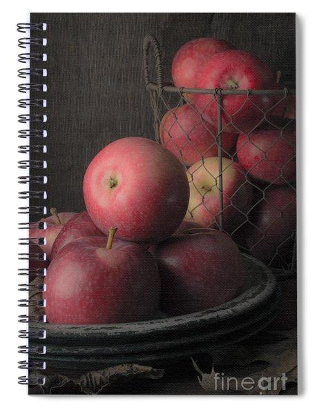 Sun Warmed Apples Still Life Spiral Notebook
