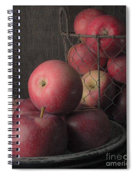Sun Warmed Apples Still Life Standard Sizes Spiral Notebook