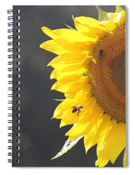 Sunflower 3 Spiral Notebook