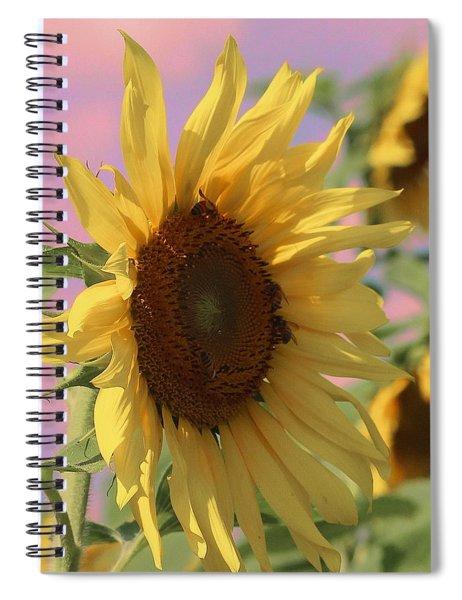 Sunflower Pop Spiral Notebook