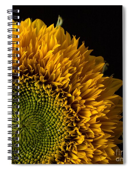 Sunflower Square Spiral Notebook