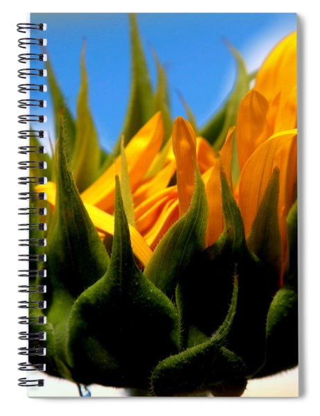 Sunflower Teardrop Spiral Notebook