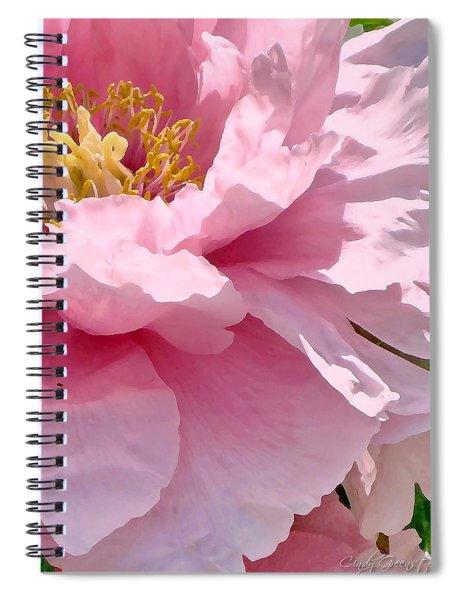Sunkissed Peonies 1 Spiral Notebook