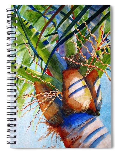 Sunlit Palm Spiral Notebook