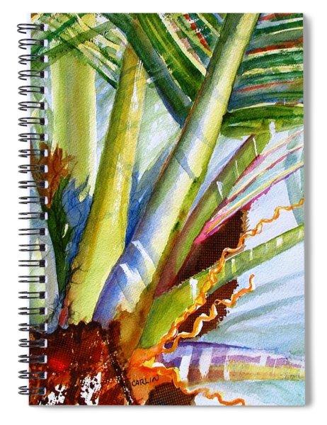 Sunlit Palm Fronds Spiral Notebook