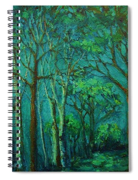 Sunlit Woodland Path Spiral Notebook