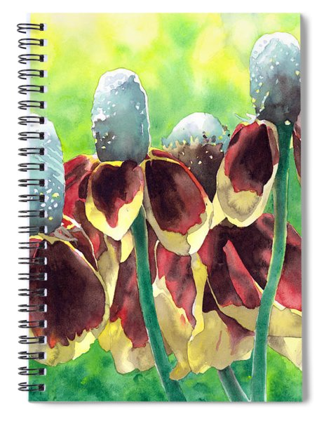 Sunny Hats Spiral Notebook