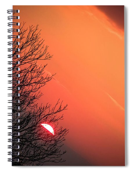 Sunrise And Hibernating Tree Spiral Notebook