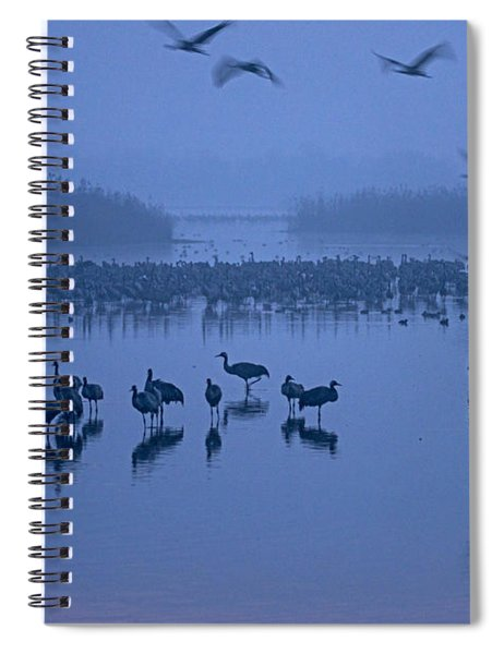 Sunrise Over The Hula Valley Israel 4 Spiral Notebook