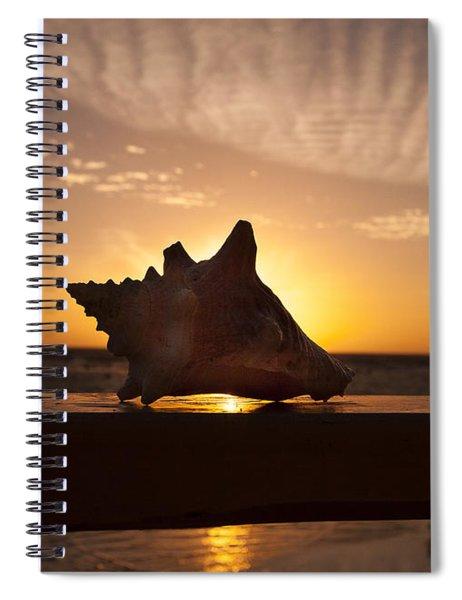 Sunrise Conch Spiral Notebook