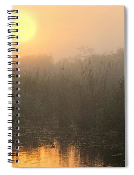 Sunrise In The Everglades Spiral Notebook